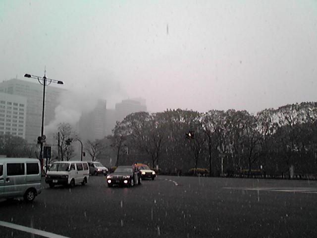 雪、降ってもうた…