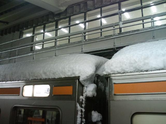 すげー雪。
